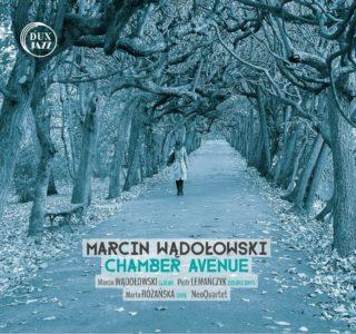 marcinwadolowski-chamber-avenue-small
